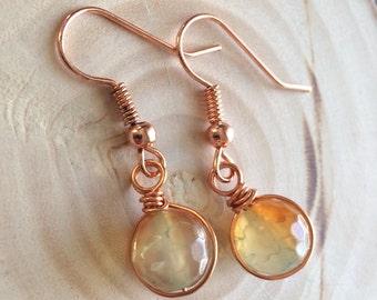 Agate Gemstone Earrings
