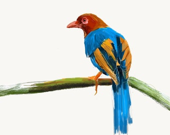 Sri Lanka Blue Magpie Print, Bird Illustration, Digital Drawing, Animal Wildlife Art Postcard  SLM