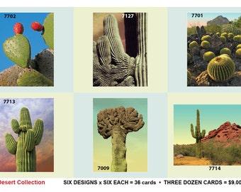 1010:Desert Postcard Collection - 6 designs, 6 each = 36 postcards