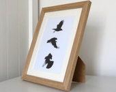 Framed crow print, black and white, bird print, wildlife art, bird art, crow art, gothic art, crow drawing, crow picture, wildlife art