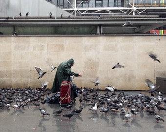 Birdman and Pigeons In Paris