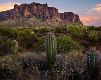 Superstition Mountains and Cactus at Sunset, Fine Art Photograph