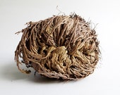 Rose of Jericho - Jericho flower, 5in, plant of resurrection, Hoodoo, Voodoo, Conjure, Root Doctor, house blessing, herb magic, root magic