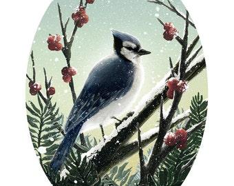 Holiday Bluejay Print