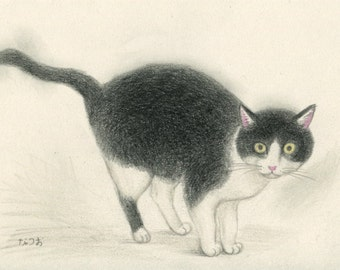 Cat original drawing - P007January2016