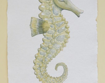 Seahorse original watercolour painting illustration sea creature