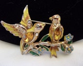 CORO Vintage Pin Bill and Coo Love Bird Glass Rhinestone Yellow Enamel Gold Plate Book Piece
