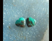 New,Chrysocolla Gemstone Heart Cabochon Pair,12x5mm,2.04g