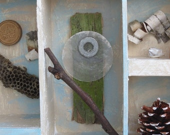 Nature Box Assemblage (in the Style of Joseph Cornell)