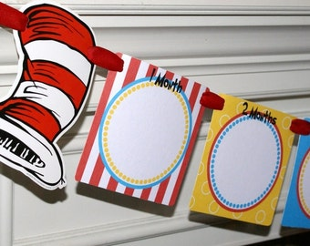 Red and White Hat Photo Banner, Picture Banner, Month Photo Banner - CAT1 (Red, Turquoise, Yellow & Black)  by The Party Paper Fairy