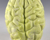 Ceramic Brain Wall Sculpture with white and light green lichen glazes