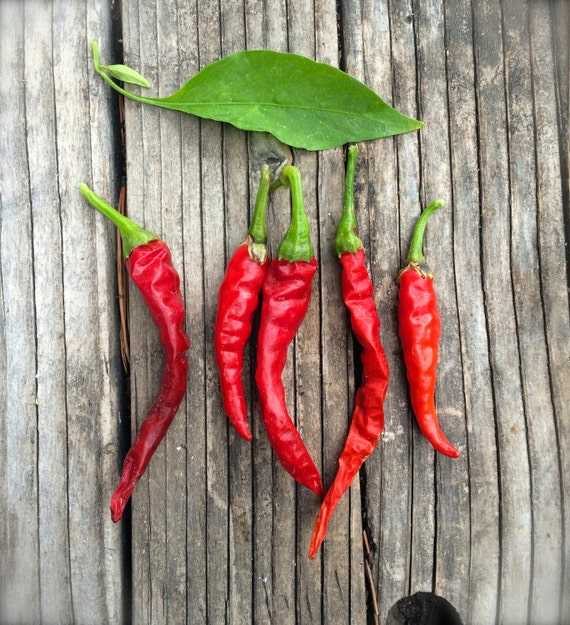 Cayenne pepper for sale