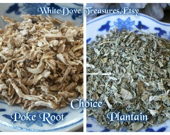 PLANTAIN LEAF - POKE Root - 1oz Choice Dry Herb Cut Certified Kosher Apothecary Alchemy Altar Spiritual Magick Witchcraft Wicca Botanical