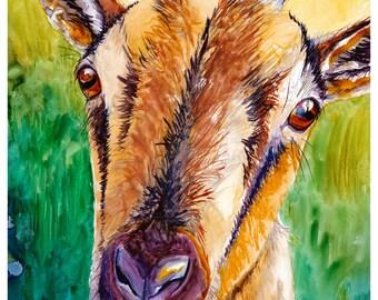 Goat Watercolor Painting Fine Art Print 5x7 Watercolor Goat Print Goat Painting Goat Art Colorful Goat Art Print Colorful Watercolor Goat