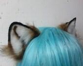 small brown fox ears