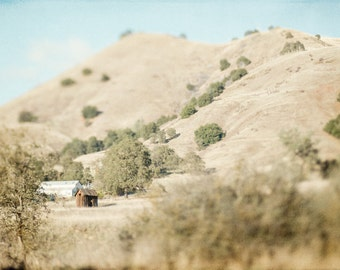 California, Rolling Hills, Landscape Photography, Fine Art Photography, 11x14