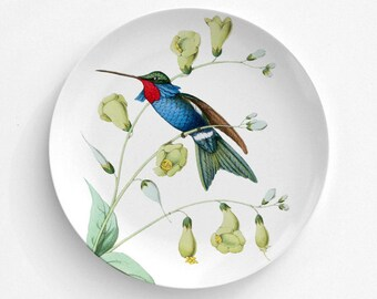 "Red Throat Humming Bird, Bird Plate, Melamine Plate, Vintage Bird Illustration, decorative plate, Dinner Plate, 10"" plate, bird design"