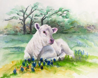 white charolais calf bluebonnets farm ranch livestock watercolor, painting print giclee canvas print western animal art green