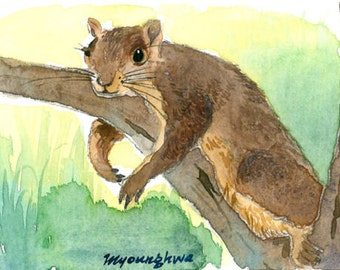 ACEO Limited Edition 2/25- Lazy spring day, Animal art print of an original watercolor, Squirrel,Gift idea for animal lovers, Home deco idea