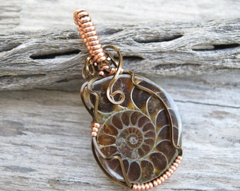 AA Ammonite Fossil Pendant, Nautilus Spiral Pendant, Antique Brass & Copper Wire Wrapped Pendant, Root Chakra Pendant, READY To SHIP AM2