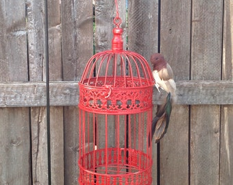 "Tall Round Red Bird Cage w Feathered Bird - 17"" Table Top - Garden Patio Hanging Cottage Chic"