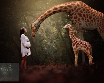 Golden Giraffes - Animal Overlay and Photoshop Action Collection for PS & PSE - Giraffe Overlays - Giraffe Photoshop Actions