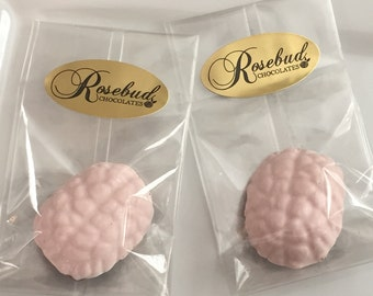 12 Chocolate Brain Favors Medical Doctor Nursing Neurologist Candy Birthday Party