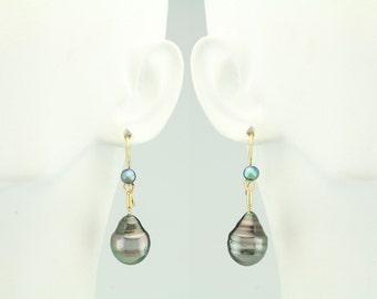 Cook Island Pearl 14KT Gold Earrings 67-10141