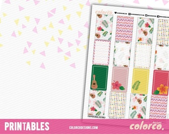 SUMMER Printable Planner Stickers Box | MAMBI Happy Planner | Instant Digital Download
