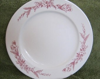 Mayer China Pink Floral Transfer Diner Lunch Salad Plate 9 inch Restaurant Ware 1950s backstamp