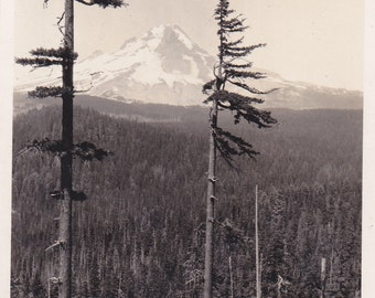 Antique Snapshot Photo of Mount Hood From Bennett Pass Oregon