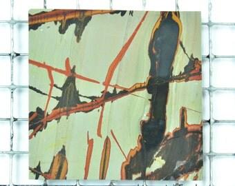 Indian Paint Stone Cabbing Slab Thin Slice RM5 #1047