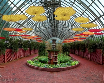Umbrellas photo, color HDR panorama photograph, red, yellow, green fine photography print, Umbrellas in the Mist