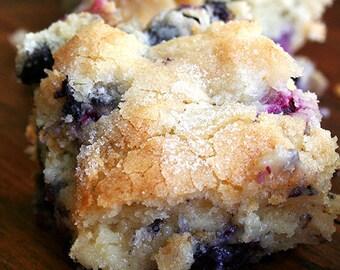 Vegan Blueberry Breakfast Cake