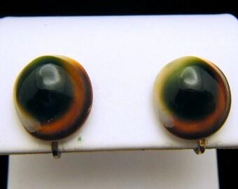 VIntage Operculum Turban Shell Earrings Screw Back