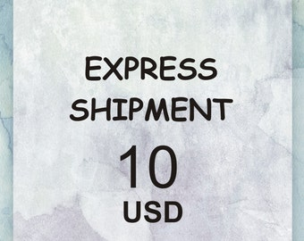 Express Shipment with UPS or DHL