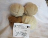 4 oz. Alpaca Roving - 100% Natural White/Beige/Light Fawn & Medium Fawn Combo Pack For Spinning, Nuno Felting or Needlefelting
