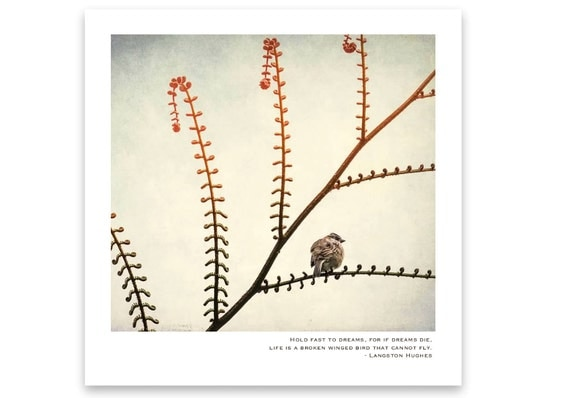 Tiny Song Bird Perched on a Branch. Fine Art Print with Inspirational Quote. Unframed Wall Decor. Nature Photography.