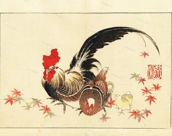 Japanese Roosters Chicken Original Antique Woodblock print From  1900  wall art- art decor-home decor decorative art