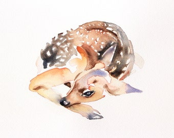 fawn . giclee fine art print of watercolor painting