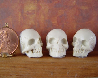 Dollhouse Miniature 1:12th Halloween Skull in Resin for Witch, Wizard, Vampire, Harry Potter, Halloween