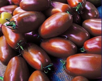 Ukrainian Purple Tomato,  Heirloom 10 +seeds
