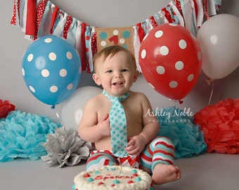 Cake Smash Red Chevron Aqua Dot Dr Suess Inspired 1st Birthday Diaper Cover Necktie