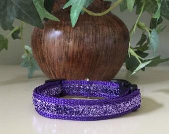 Small Dog Collar- Purple Glitter Center on Purple Webbing