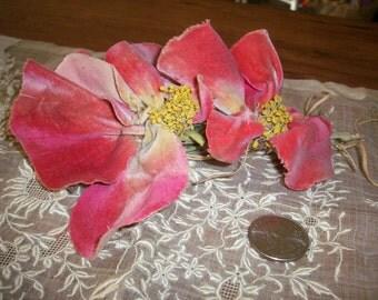 Early antique velvet flower
