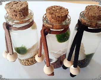 Marimo pet bottle