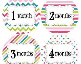 Baby Month Stickers Baby Monthly Stickers Girl Monthly Bodysuit Stickers Baby Shower Gift Photo Prop Baby Milestone Sticker 212