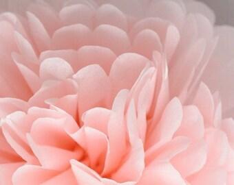 Light Pink pompom,party poms,birthday pompoms,Firstbirthday,baby shower,hanging poms,nursery pom pom,pompoms,party decorations