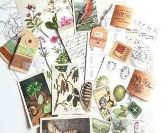 Nature-themed VINTAGE EPHEMERA creativity kit with  Book pages, collectors cards, stamps, washisamples and coordinating craft supplies