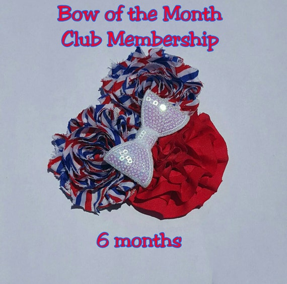Baby Gift Of The Month Club : Month bow of the membership club by weelassesandlads